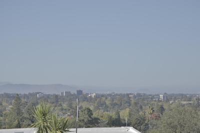 San Mateo Single Family Home For Sale: 319 W 39th Avenue