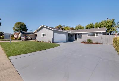 San Jose Single Family Home For Sale: 4603 Borina Drive