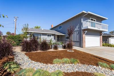 San Jose Single Family Home For Sale: 1731 Ewer Drive
