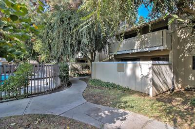 Santa Clara Condo/Townhouse For Sale: 970 Kiely Boulevard #B