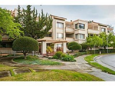 Palo Alto Condo/Townhouse For Sale: 440 Cesano Court #311