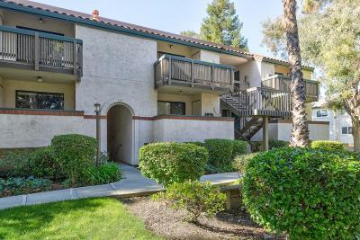 Sunnyvale Condo/Townhouse For Sale: 704 San Conrado Terrace #6