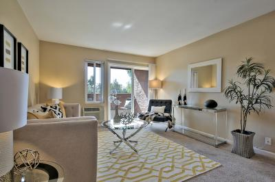 Milpitas Condo/Townhouse Pending Show For Backups: 428 Dempsey Road #231
