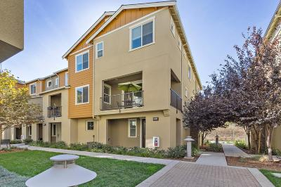 Milpitas Condo/Townhouse Pending Show For Backups: 1565 Coyote Creek Way