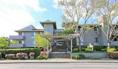 Cupertino Condo/Townhouse For Sale: 22330 Homestead Road #222