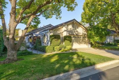 San Jose Single Family Home For Sale: 7143 Via Solana