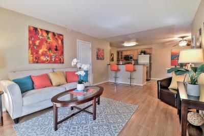 Milpitas Condo/Townhouse For Sale: 436 Dempsey Road #139