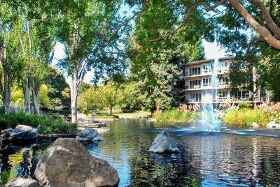 San Mateo Condo/Townhouse For Sale: 902 Peninsula Avenue #312