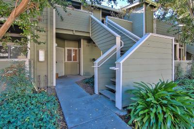 San Jose Condo/Townhouse For Sale: 607 Shadow Dance Drive