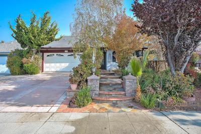 Milpitas Single Family Home For Sale: 378 Spring Valley Lane