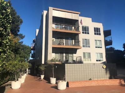 San Mateo Rental For Rent: 30 Mounds Road #404