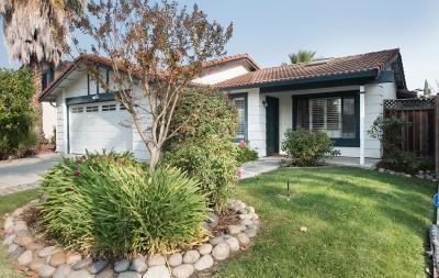 San Jose Single Family Home For Sale: 5384 Duesenberg Drive