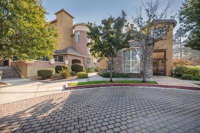 San Jose Condo/Townhouse For Sale: 1550 Technology Drive #3069