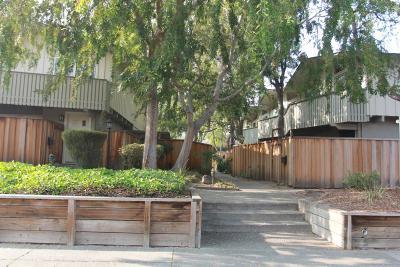 San Jose Condo/Townhouse For Sale: 1155 Weyburn Lane #31