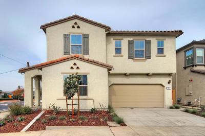 Gilroy Single Family Home For Sale: 771 Einstein Place