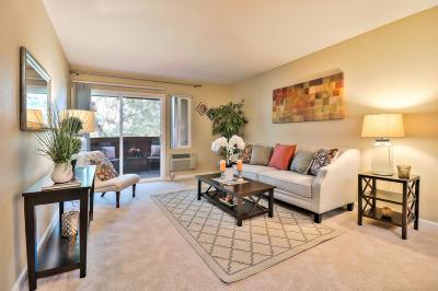 Milpitas Condo/Townhouse For Sale: 440 Dempsey Road #242