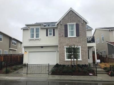 Dublin Single Family Home For Sale: 7395 Diamond Mountain Road