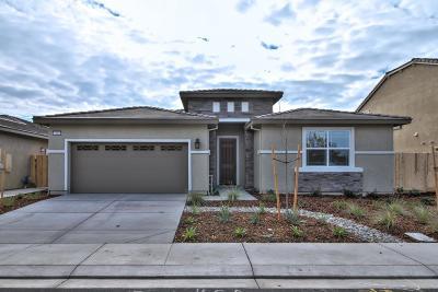 Single Family Home For Sale: 1168 Silva Way