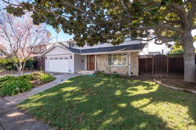 San Jose Single Family Home For Sale: 1564 Darlene Avenue