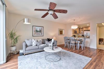 San Jose Condo/Townhouse For Sale: 809 Auzerais Avenue #315