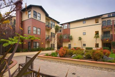 Palo Alto Condo/Townhouse For Sale: 435 Sheridan Avenue #308