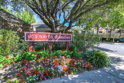 Los Gatos Condo/Townhouse For Sale: 449 Alberto Way #C134