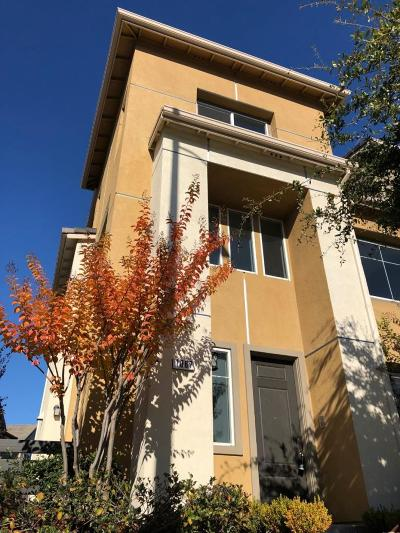 Sunnyvale Condo/Townhouse For Sale: 1087 E Duane Avenue