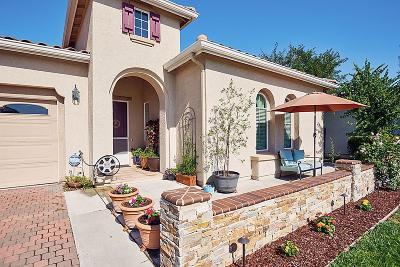 Gilroy Single Family Home For Sale: 9711 Zuni Lane