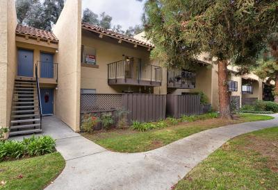 San Jose CA Condo/Townhouse For Sale: $469,900