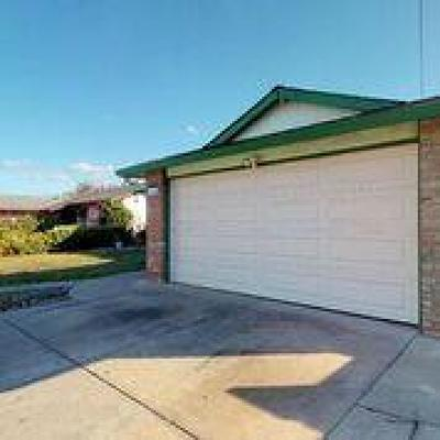 Hayward Single Family Home Pending Show For Backups: 2186 Catalpa Way