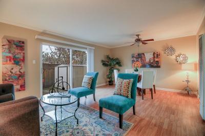 San Jose Condo/Townhouse For Sale: 2925 Florence Avenue #60