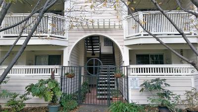 Sunnyvale Condo/Townhouse For Sale: 604 Arcadia Terrace #203
