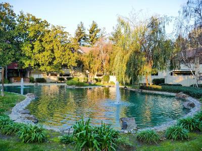 Santa Clara Condo/Townhouse For Sale: 978 Kiely Boulevard #D
