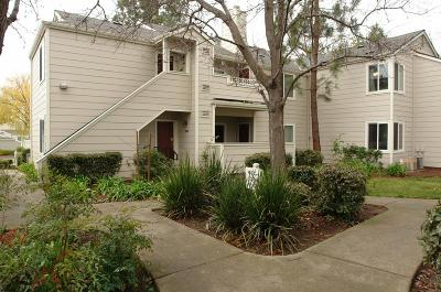 San Ramon Condo/Townhouse For Sale: 304 Norris Canyon Terrace