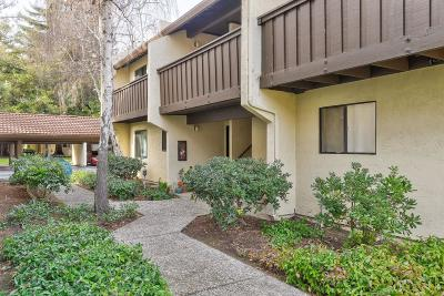 Sunnyvale Condo/Townhouse For Sale: 1001 E Evelyn Terrace #163