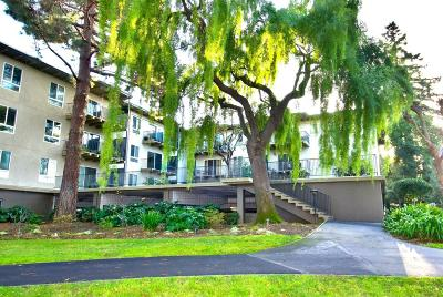 San Mateo Condo/Townhouse For Sale: 820 N Delaware Street #308