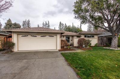 Sunnyvale Single Family Home For Sale: 1027 Azalea Drive