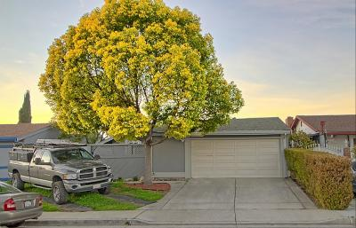 San Jose Single Family Home For Sale: 1315 Bagely Way