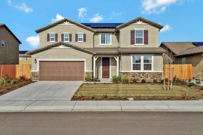 Manteca Single Family Home For Sale: 593 Whetstone Street