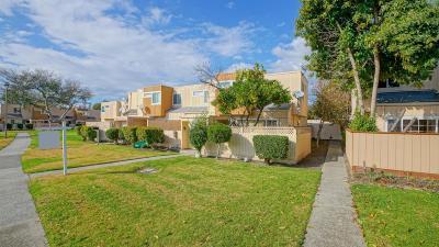San Jose Condo/Townhouse For Sale: 2189 Luz Avenue