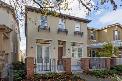 San Jose Single Family Home For Sale: 238 Monte Vista Drive