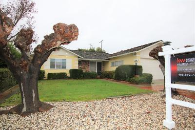 Mountain View Single Family Home For Sale: 1672 Notre Dame Drive