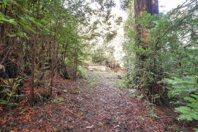 Los Gatos Residential Lots & Land For Sale: 21578 Alma Court