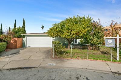 San Jose Single Family Home For Sale: 10062 Bethel Avenue