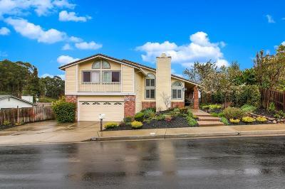 Hayward Single Family Home For Sale: 2614 Spencer Lane