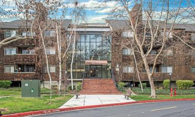 San Jose Condo/Townhouse For Sale: 1156 La Terrace Circle
