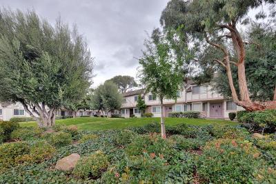 Santa Clara Condo/Townhouse For Sale: 1029 Las Palmas Drive
