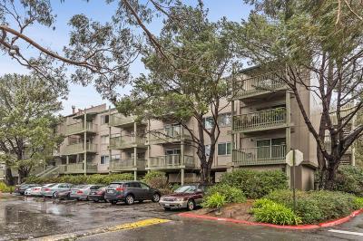 San Mateo County Condo/Townhouse For Sale: 361 Half Moon Lane #101