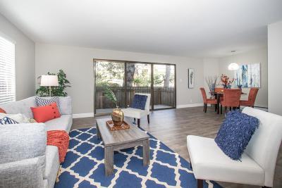 Burlingame Condo/Townhouse For Sale: 1477 Floribunda Avenue #107