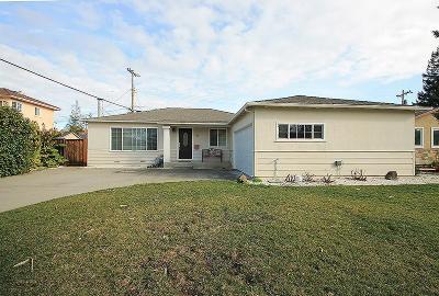 San Jose Single Family Home For Sale: 720 Widget Drive